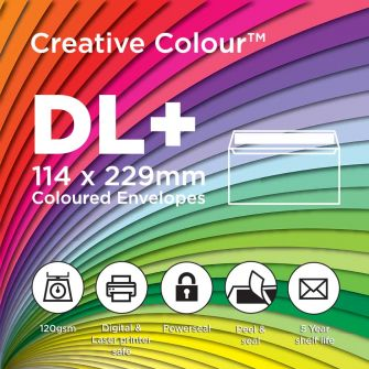 DL+ Wallet Peel and Seal 114x229mm 120gsm Envelopes