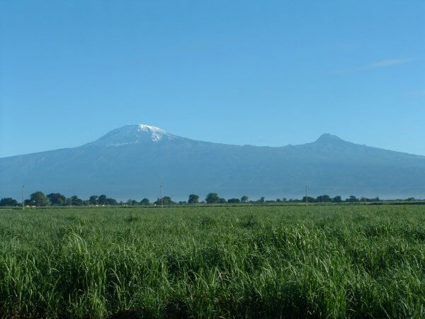 Nicole is climbing Mount Kilimanjaro!