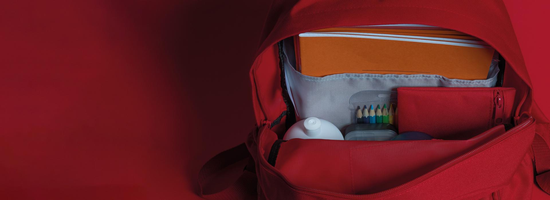 Inside the School Bag
