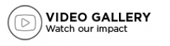 Video gallery navigation