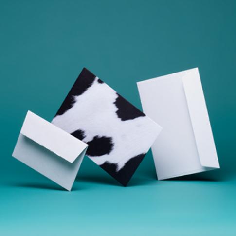 Creative Senses Envelopes