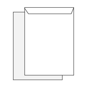 Diagram of C4 envelope