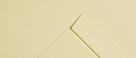 Vellum Laid Envelopes & Paper