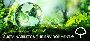 Sustainability & Wellbeing